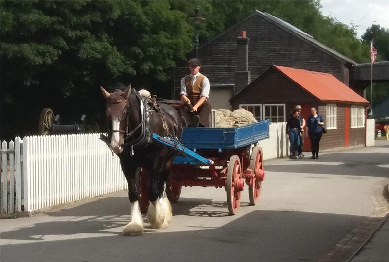 Pony & Cart Blists Hill