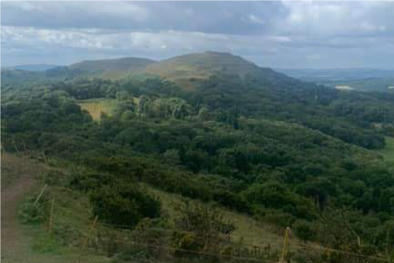 Looking out over the Malverns